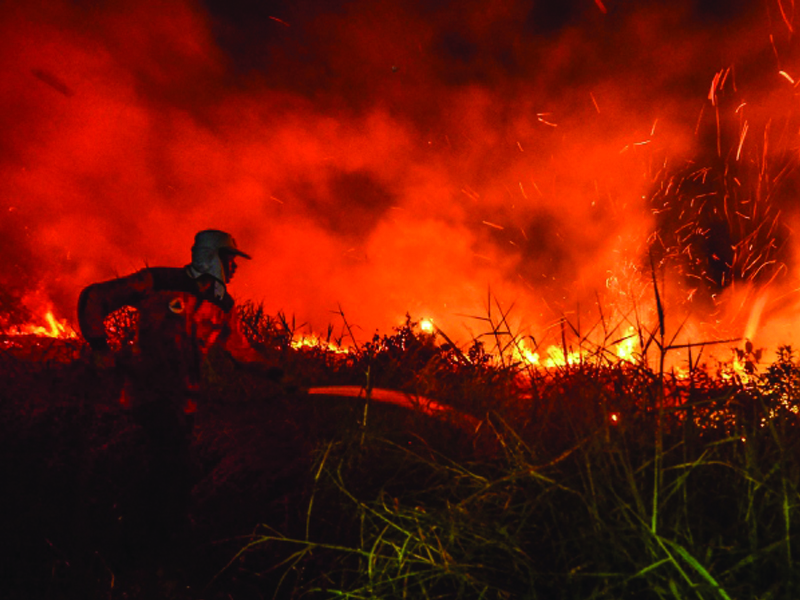 Lebih 42,000 Hektar Hutan Terbakar Di Indonesia