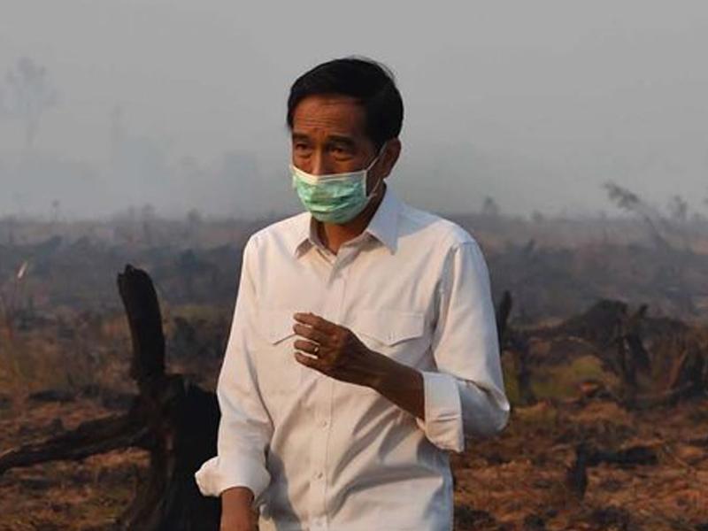 Jerebu: Jokowi Malu Dengan Malaysia, Singapura