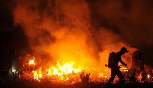 Dunia Tidak Berbuat Apa-Apa Hentikan Kebakaran Hutan
