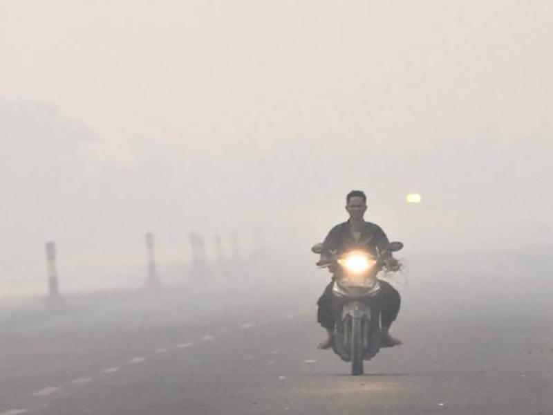 Pemerintah Indonesia Tak Serius Tangani Kebakaran Hutan
