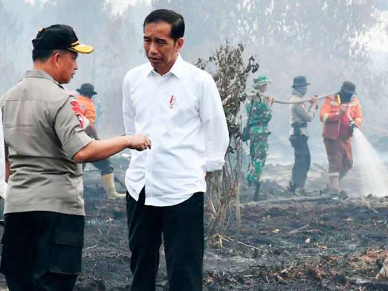 Jerebu: Indonesia Kini Lakukan Segala-Galanya – Jokowi