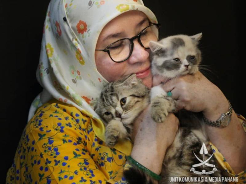 Hantaran Minang Kucing Tunku Azizah 21 Dulang