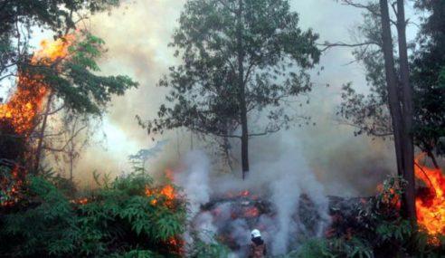 Jerebu: Seluruh Malaysia Dilarang Lakukan Pembakaran Terbuka
