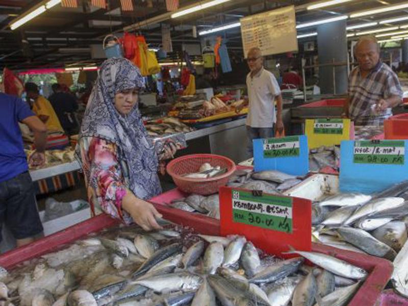 Stok Ikan Di Perairan Semakin Kurang, Saiz Mengecil