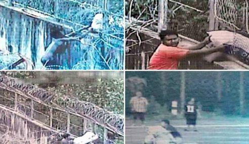 Pagar Bolos, Penyeludupan Berterusan Di Padang Besar
