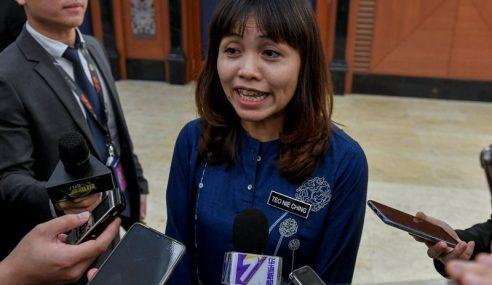 Henti Pertikai Sekolah Vernakular Di Negara Ini- Nie Ching