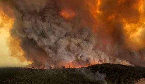 Kebakaran Belukar Di Australia Semakin Buruk