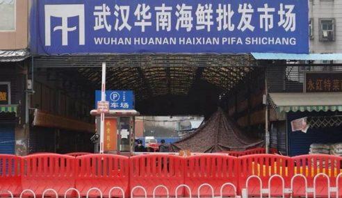 Ular Mungkin Punca Virus Korona Di China