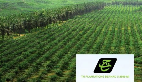 Penjualan Ladang TH Plantations Di Bawah Nilai Pasaran