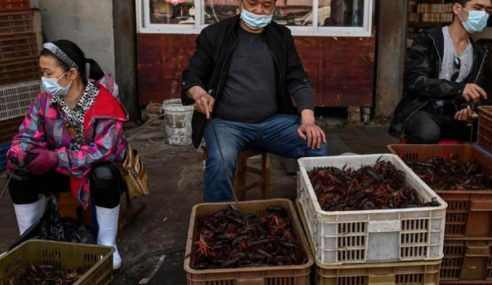 Amerika Gesa China Tutup Pasar Jual Haiwan Liar