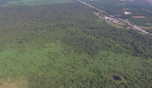Jangan Nyah Warta Hutan Simpan Kekal Kuala Langat