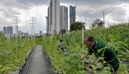 Lebaran Bermakna Buat Peserta Kebun Bandar 'Hijrah Warrior'